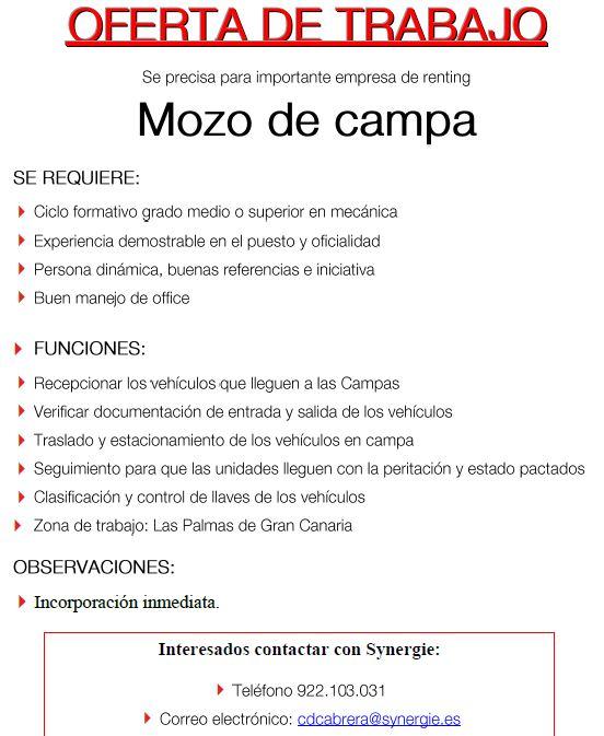 Mozo de Campa para empresa de renting en Gran Canaria