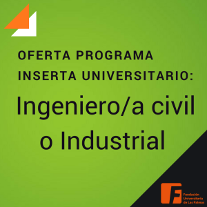 Ingeniero Civil o Industrial